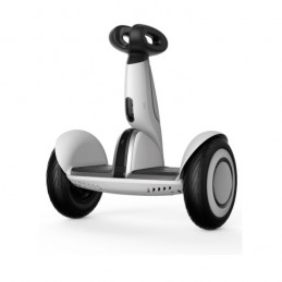 copy of Robot SEGWAY Loomo...